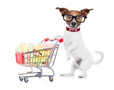 pet-shop-suceava